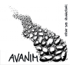 avanim_cd_cover